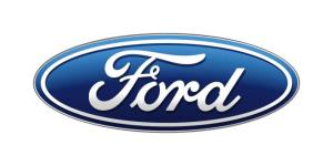 Ford Motor Company Fund: Completed Eagle Project Survey